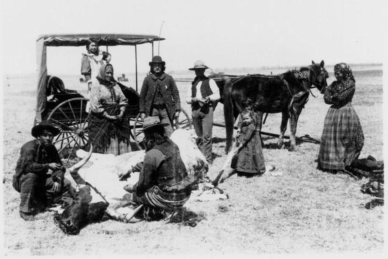 Caddo family butchering a Longhorn steer near Anadarko Agency, Oklahoma, 1894