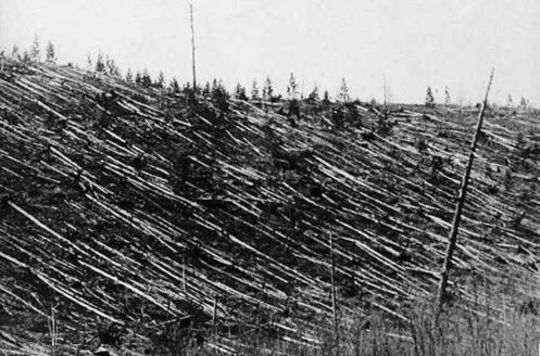 June 30 – The Tunguska event in Krasnoyarsk Krai, Siberia, Russian Empire, flattens 2000 square kilometers of uninhabited forest