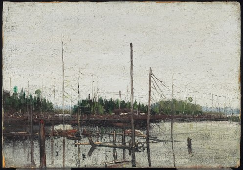 Tom Thomson - Drowned Land